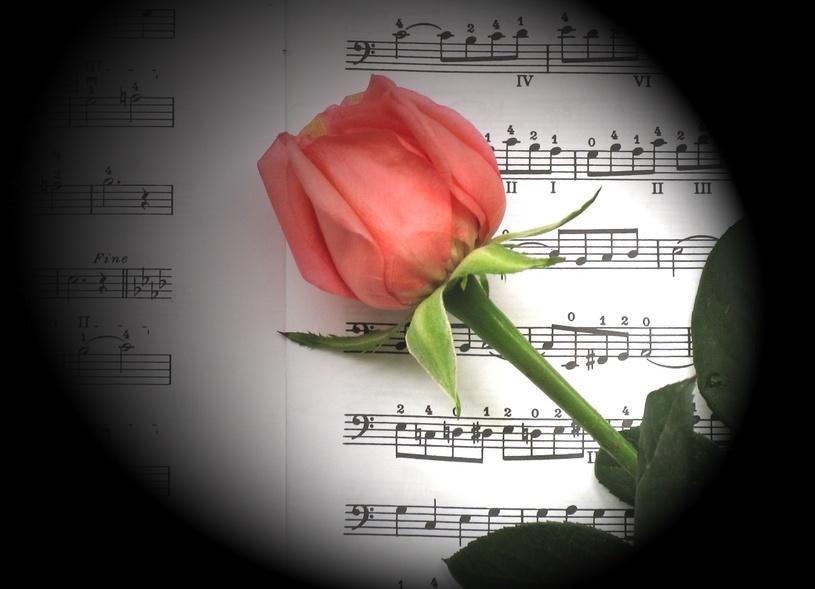 Parole de chanson la rencontre amoureuse